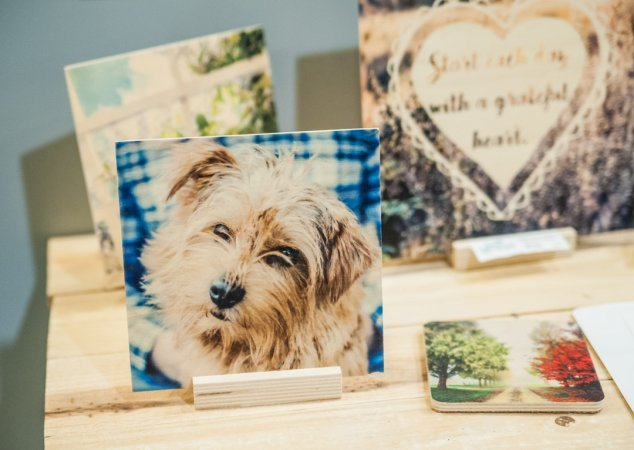 Photographic Wood Prints by Live Wonderful in Adjectives Altamonte