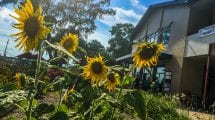 Local Community Spaces in Central Florida- East End Market