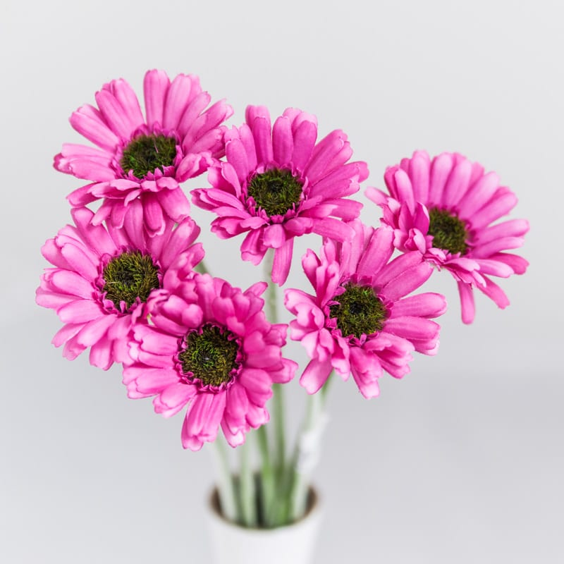 Silk Gerbera Daisy Bouquet Purple